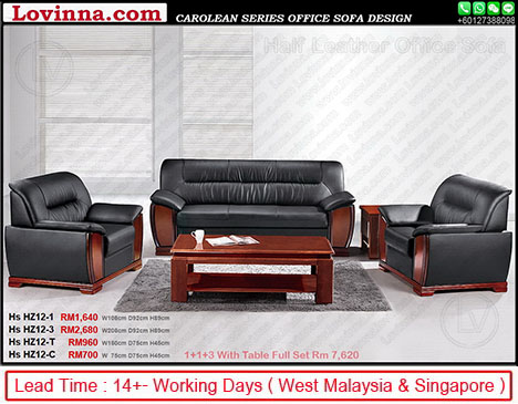office sofa in leather