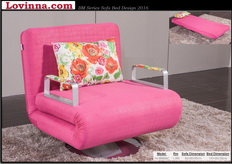 Fully Washabel Sofa Bed